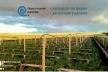 На Прикарпатті відкриють першу в області равликову ферму