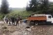 У річки Прут і Черемош випустили 135 тисяч мальків форелі