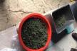 Поліцейські викрили прикарпатця, який вдома зберігав марихуану