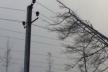Через негоду на Прикарпатті більше 70 населених пунктів без світла