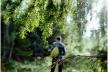 У Долинському районі рятувальники розшукали жінку, яка пішла по гриби і заблукала