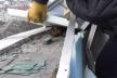 У Франківську з даху новобудови врятували колонію червонокнижних кажанів