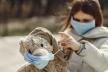 Сумна статистика: за добу на Прикарпатті підтвердили 646 випадків коронавірусу