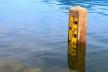 Через опади у річках Прикарпаття підніметься рівень води