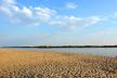 На Прикарпатті всього три пляжі є безпечними для відпочинку