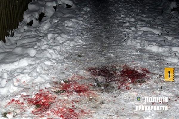 Душив, бив і різав: на Франківщині 24-річний чоловік убив матір (Фото 18+)