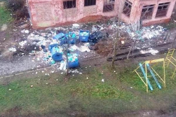 У Коломиї проблеми з вивозом сміття