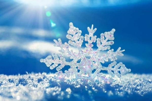 Зима не відступає: на Прикарпаття насуваються морози та снігопади
