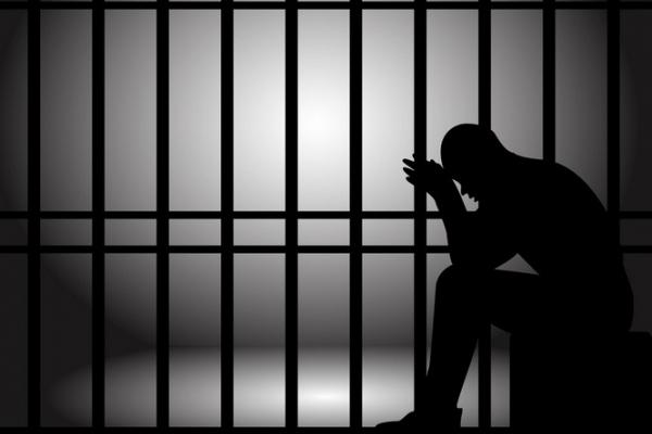 До 10 років за ґратами: Прикарпатець розповсюджував дитячу порнографію в Інтернеті