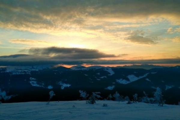 Світанок у горах. Осмолода, що виблискує кольорами на снігу (Фото)