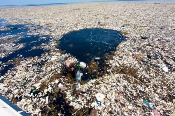 У Франківську водолази витягнули з міського озера майже 150 кілограмів сміття