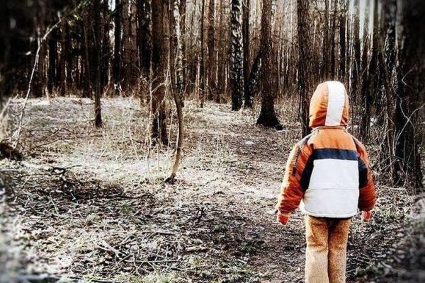 На Прикарпатті 4-річна дитина заблукала і добу провела в лісі