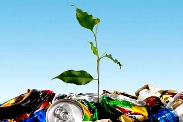 Викидати можна не все: у Франківську запровадять нові правила сортування сміття