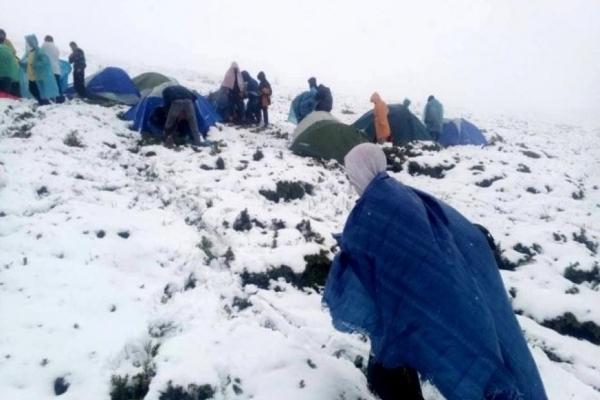 Червневий сніг: на Прикарпатті туристи фотографують засніжені пейзажі, а рятувальники евакуйовують наметові дитячі табори (Відео)