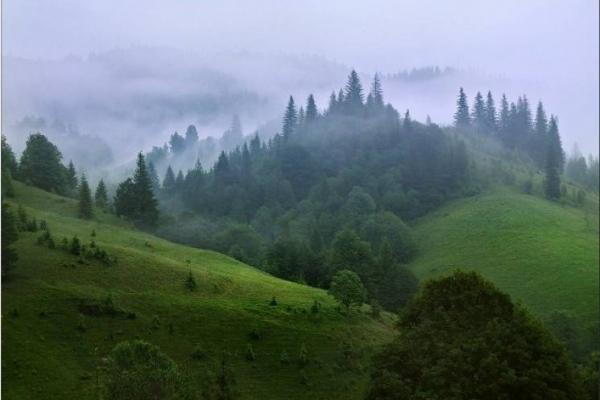 Прикарпатські рятувальники шукали в горах туриста з Києва
