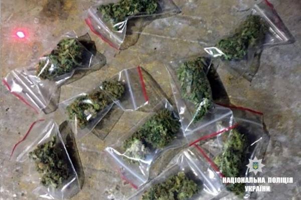 У калушанина знайшли півкілограма марихуани (Фото)