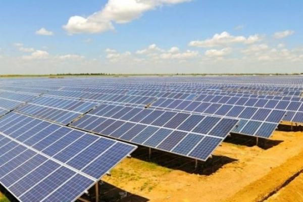 Село поблизу Івано-Франківська забудують сонячними електростанціями