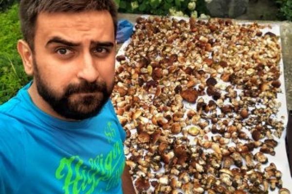 Майже 100 кілограм: Прикарпатці в мережі хизуються урожаєм білих грибів