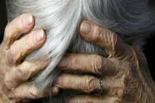 Троє юнаків зв'язали і пограбували бабусю на Прикарпатті