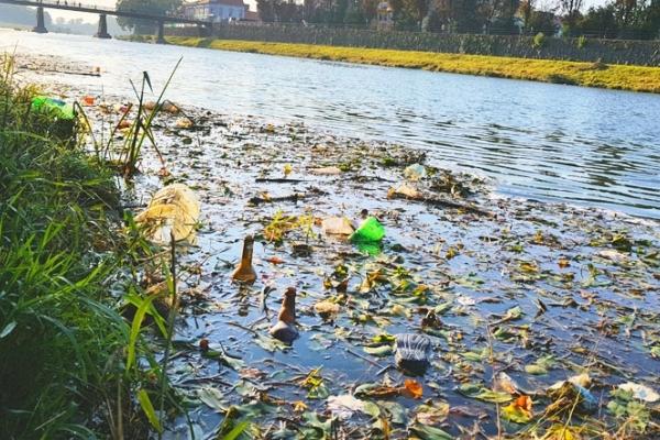 Річки Прикарпаття перетворюють на смітники