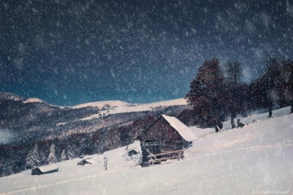 У високогір'ї Карпат – хурделиця (Фото)