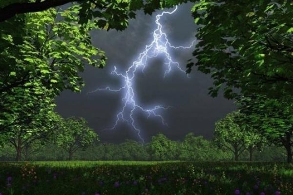 Сильний вітер і грози: на Великодні вихідні на Прикарпатті штормитиме