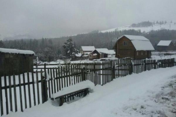 На Прикарпатті випало до 15 сантиметрів снігу (Фото)