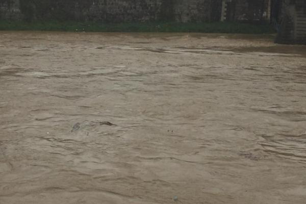 Потоп на Прикарпатті та Закарпатті: затоплені двори і зруйновані мости
