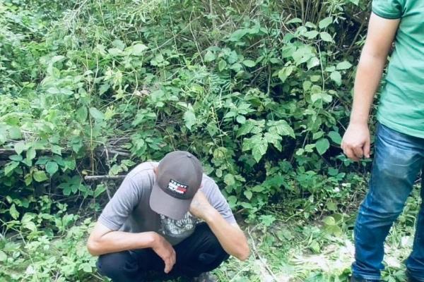 Коломиянин облаштував біля річки «город» - вирощував коноплю (Фото)