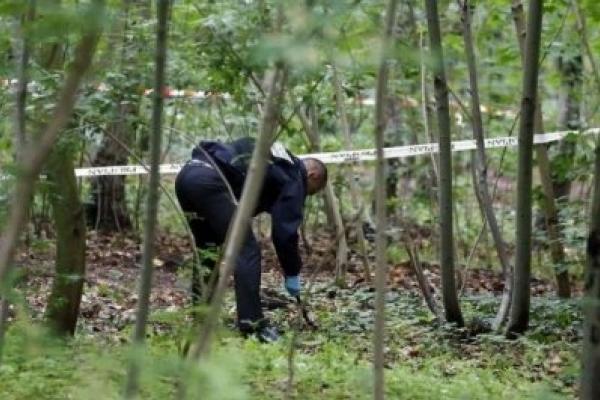Вдарився головою об камінь: У лісі на Городенківщині знайшли тіло чоловіка