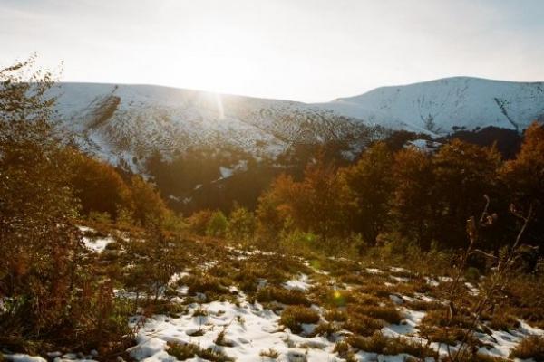 Сніг у Карпатах можливий уже у п'ятницю - синоптики