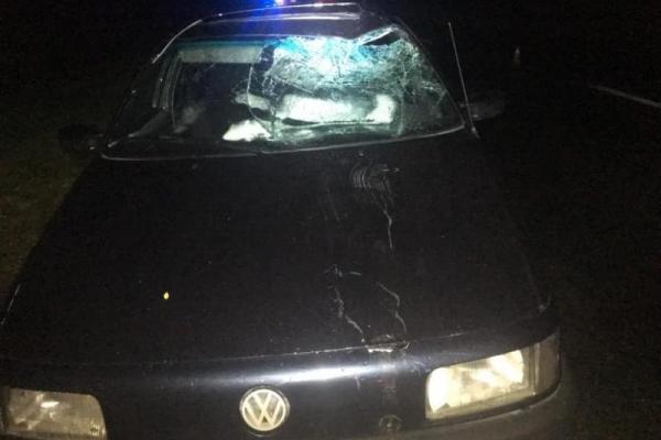 На Прикарпатті водій збив велосипедиста – чоловік помер