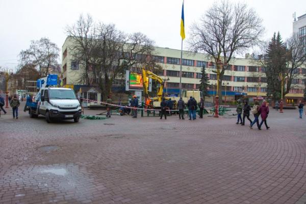 В Івано-Франківську почали встановлювати головну ялинку (Фото)