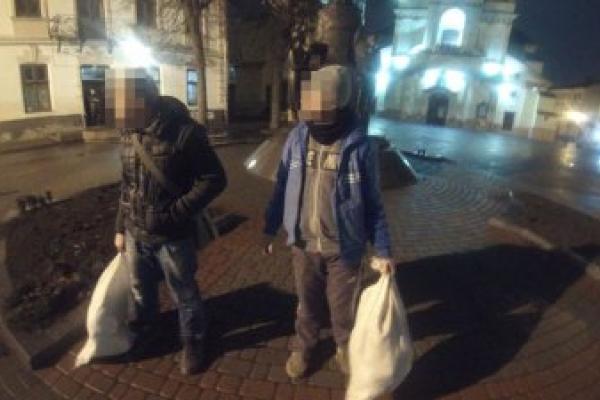 Двоє франківців серед ночі намагались викрасти туї