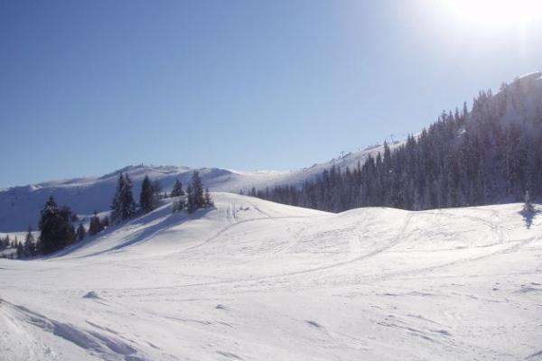 Зимові курорти Карпат, які в 5 разів дешевші за Буковель (Фото)