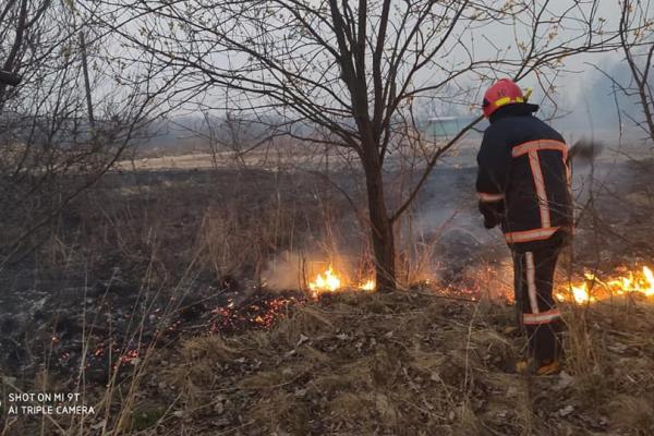 Прикарпатці продовжують масово спалювати суху траву (фото)