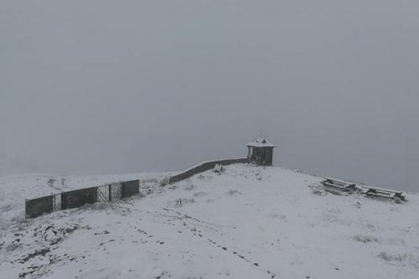 У Карпатах випав травневий сніг (Відео)