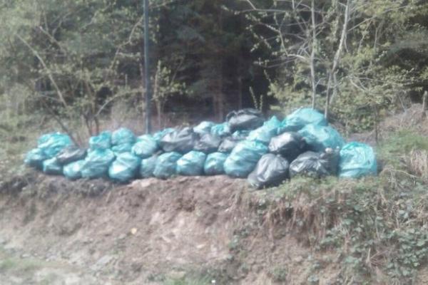 Прикарпатця, який упродовж років скидав сміття у лісі, змусили прибирати