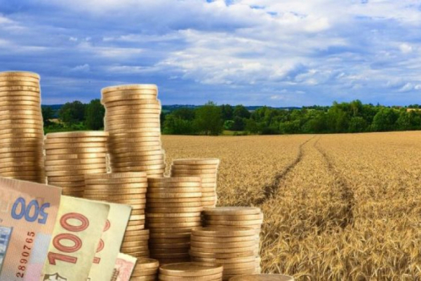 На Прикарпатті вимагають повернути громаді землю вартістю понад 15 мільйонів