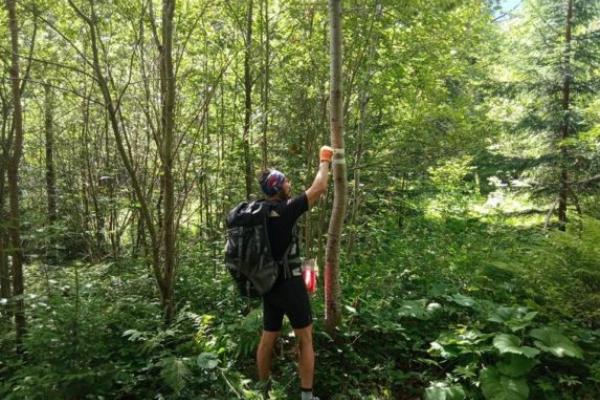 У Карпатах відновлюють гірські маркування для туристів