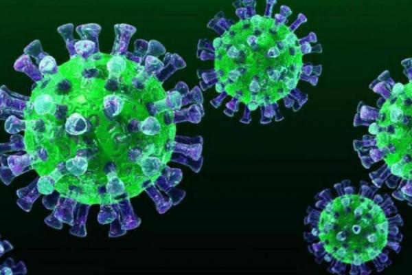 Коронавірус на Прикарпатті: за добу зафіксували 572 нові випадки та 7 смертей