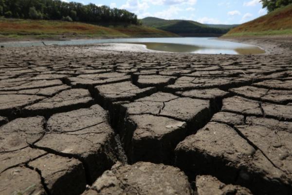 На Прикарпатті міліють водойми. Як врятувати?